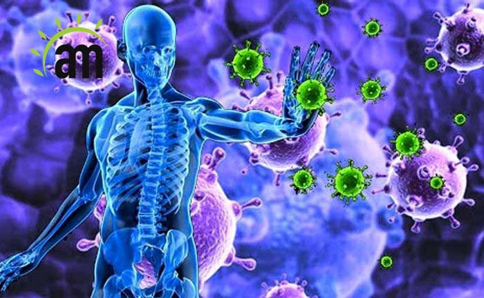 Useful methods to strengthen the immune system and fight disease