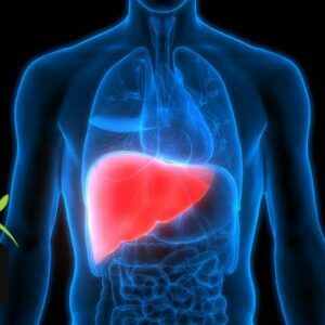 how to care fatty liver disease