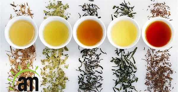 best herbal tea for your liver