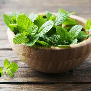what is the biggest benefits of mint leaves