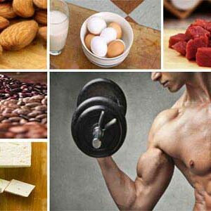 best animal protein for your bodybuilding