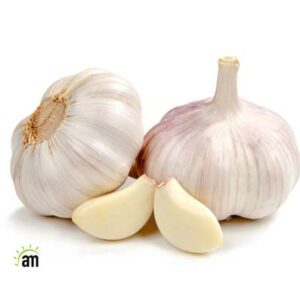 what is the biggest benefits of garlic?